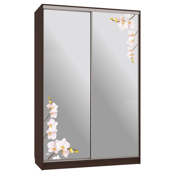 шкаф-купе рио 4-600-орхидеи